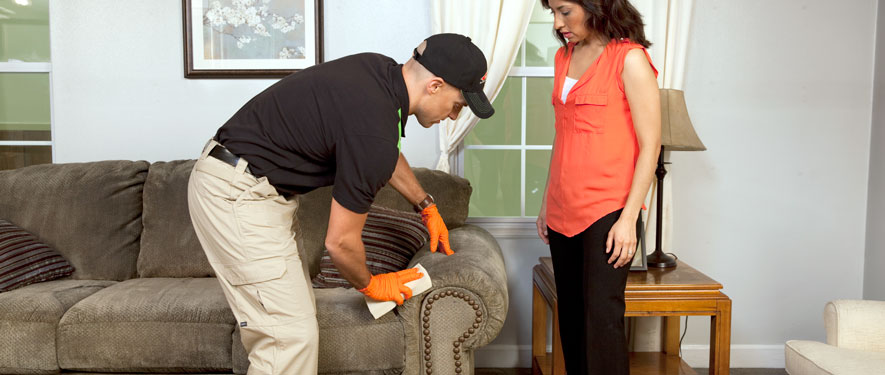 East York, PA carpet upholstery cleaning